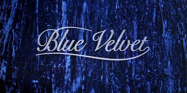 Image result for blue velvet poster