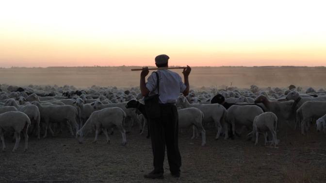 El Pastor (The Shephard) – Review